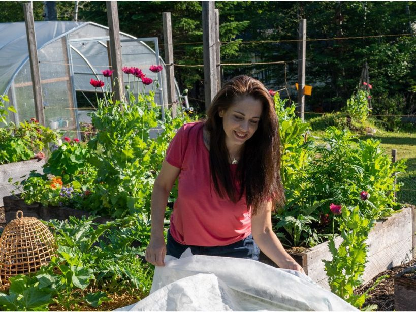 for-food-growers-the-ability-to-extend-the-season-is-an-exciting-idea