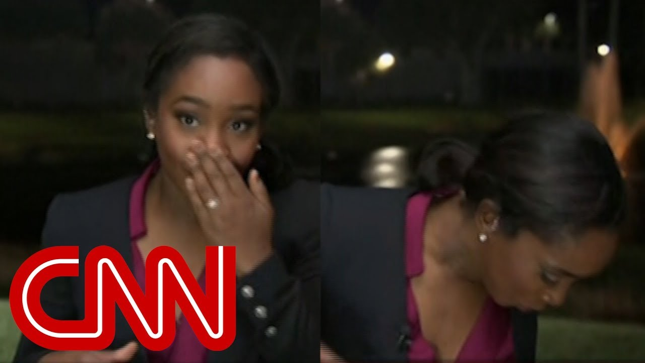 cnn-reporter-attacked-by-lizard-on-live-tv