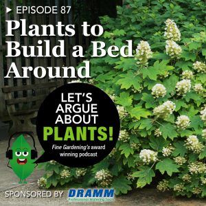 Episode 87: Plants to Build a Bed Around